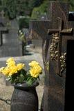 Rosas amarillas en un cementerio Foto de archivo libre de regalías
