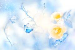 Rosas amarillas hermosas y mariposa azul en la imagen natural del invierno artístico de la nieve y de la helada foto de archivo libre de regalías