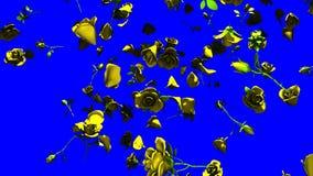 Rosas amarillas que caen en llave azul de la croma ilustración del vector