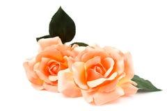 Rosas anaranjadas de seda Imagen de archivo libre de regalías