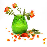 Rosas anaranjadas delicadas en un florero verde Imagenes de archivo
