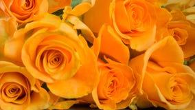 Rosas anaranjadas en pizarra Foto de archivo