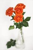 Rosas anaranjadas en un florero Imagen de archivo