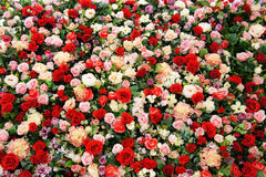 Rosas artificiais Imagem de Stock Royalty Free