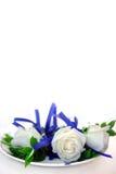Rosas blancas Foto de archivo libre de regalías