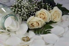 Rosas blancas de los anillos de bodas Imagen de archivo libre de regalías