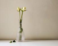Rosas blancas en el florero de cristal Fotos de archivo libres de regalías