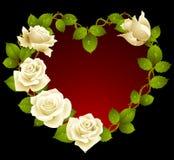 Rosas blancas en la dimensión de una variable del corazón Imagen de archivo