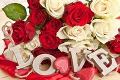 Rosas blancas y rojas Fotos de archivo libres de regalías
