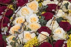 Rosas blancas y rojas Foto de archivo