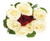 Rosas blancas y rojas Fotografía de archivo