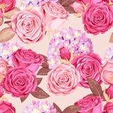 Rosas bonitas e hortênsia sem emenda Foto de Stock