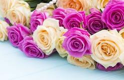 Rosas bonitas em um fundo do azul de turquesa Foto de Stock
