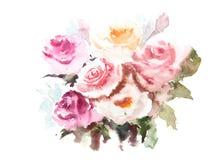 Rosas bonitas, ilustrador da aquarela Imagens de Stock Royalty Free