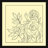 Rosas bonitas isoladas na luz - fundo amarelo Ilustração desenhada mão do vetor com flores Imagens de Stock