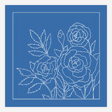 Rosas bonitas isoladas no fundo azul Ilustração desenhada mão do vetor Imagens de Stock