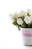 Rosas brancas com fita cor-de-rosa Imagens de Stock Royalty Free
