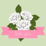 Rosas brancas com fita cor-de-rosa Fotografia de Stock