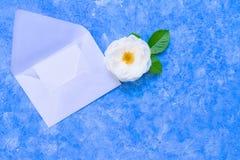 Rosas brancas e um envelope aberto em um claro - fundo azul um molde para um cartão Copie o espa?o fotografia de stock royalty free