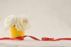 Rosas brancas no potenciômetro amarelo Fotos de Stock Royalty Free