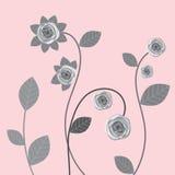 Rosas cinzentas Fotos de Stock Royalty Free