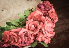 Rosas clásicas de la tarjeta del día de San Valentín Fotos de archivo libres de regalías