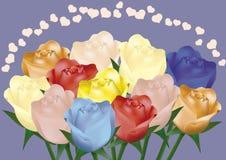 Rosas coloridas Fotos de Stock