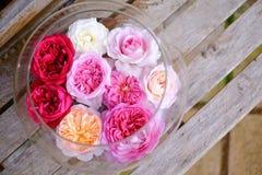 Rosas coloridas en el florero de cristal Fotografía de archivo
