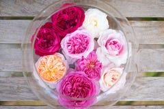 Rosas coloridas en el florero de cristal Foto de archivo