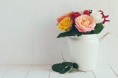 Rosas coloridas en el pote blanco del café del esmalte Foto de archivo