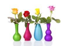 Rosas coloridas en floreros sobre el fondo blanco Imágenes de archivo libres de regalías