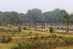 Rosas coloridas en Rose Garden nacional, Nueva Deli, la India Fotos de archivo libres de regalías