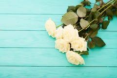 Rosas coloridas no fundo de madeira azul Fotografia de Stock Royalty Free