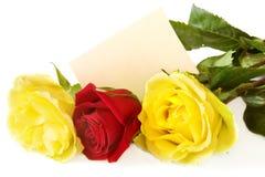 Rosas com cartão imagens de stock royalty free