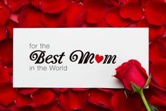 Rosas com dia da mulher internacional do 8 de março no papel - Imagens de Stock Royalty Free