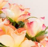 Rosas contra un fondo brillante Foto de archivo