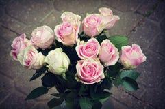 Rosas cor-de-rosa Fotos de Stock Royalty Free