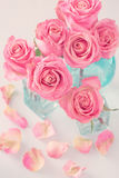 Rosas cor-de-rosa bonitas Imagem de Stock Royalty Free