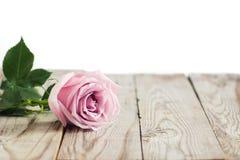 Rosas cor-de-rosa borradas no fundo de madeira Imagem de Stock