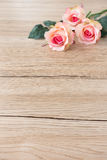 Rosas cor-de-rosa com as hastes no fundo de madeira de Brown fotografia de stock royalty free