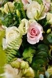Rosas cor-de-rosa e brancas Imagens de Stock