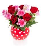 Rosas cor-de-rosa e vermelhas Imagem de Stock