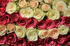 Rosas cor-de-rosa em máscaras diferentes no arranjo do casamento Imagens de Stock