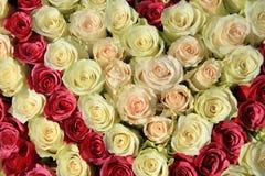 Rosas cor-de-rosa em máscaras diferentes no arranjo do casamento Imagem de Stock Royalty Free