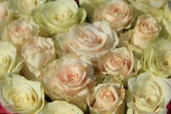 Rosas cor-de-rosa em máscaras diferentes no arranjo do casamento Foto de Stock Royalty Free