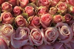 Rosas cor-de-rosa em um arranjo nupcial Imagem de Stock Royalty Free