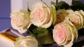 Rosas cor-de-rosa em um livro velho Fim acima da flor cor-de-rosa da pétala cor-de-rosa com o ramalhete cor-de-rosa da flor da ro video estoque