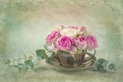 Rosas cor-de-rosa em uma xícara de chá foto de stock