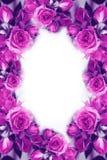 Rosas cor-de-rosa Flores Use materiais impressos, sinais, artigos, Web site, mapas, cartazes, cartão, empacotando Imagens de Stock