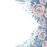 Rosas cor-de-rosa modernas do molde ilustração do vetor